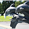 Dolphinfountain