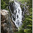 Myrtlefalls_seattle_sm